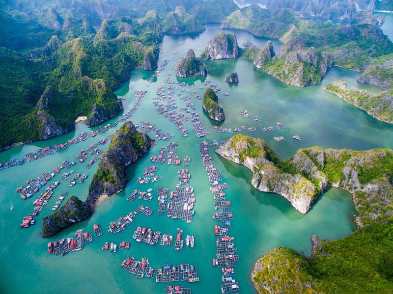 Ninh Bình – Cát Bà – Đảo Khỉ - Ninh Bình - Tourguide Hải Đăng